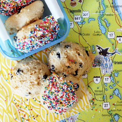 Blueberry, Coconut and Mango Yogurt Cookies + {Road Trip Goodies}