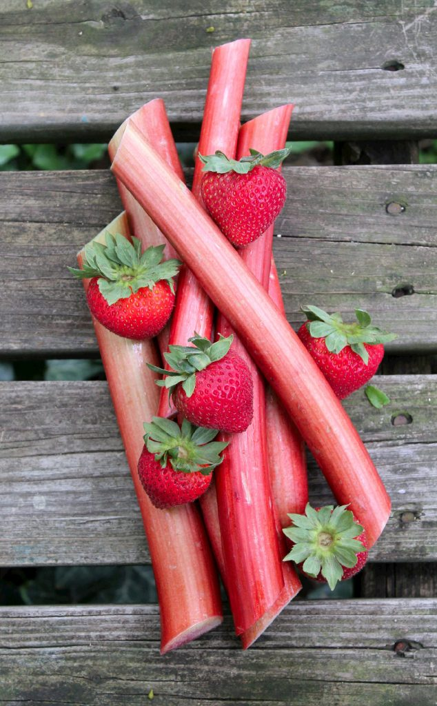 straw rhubarb