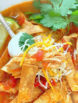 close up view of chicken tortilla soup