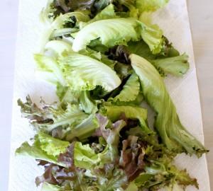 Local Salad Greens