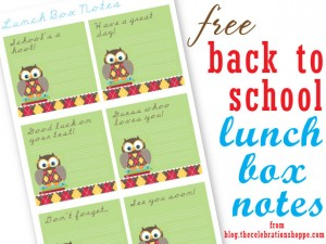 Owl Lunch Notes