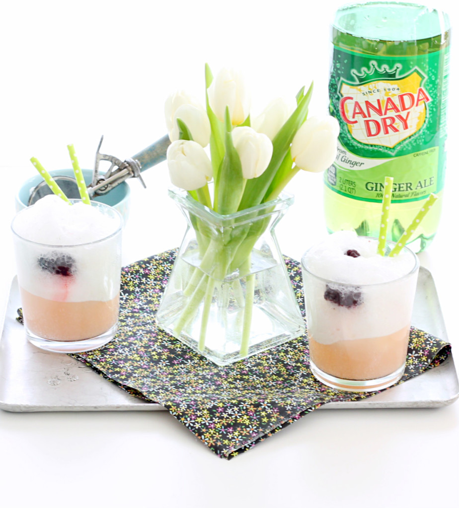 Keep Spring Bubbly with Canada Dry Ice Cream Floats by Foodtastic Mom #KeepSpringBubbly #ad