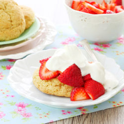 Strawberry Shortcake by Foodtastic Mom