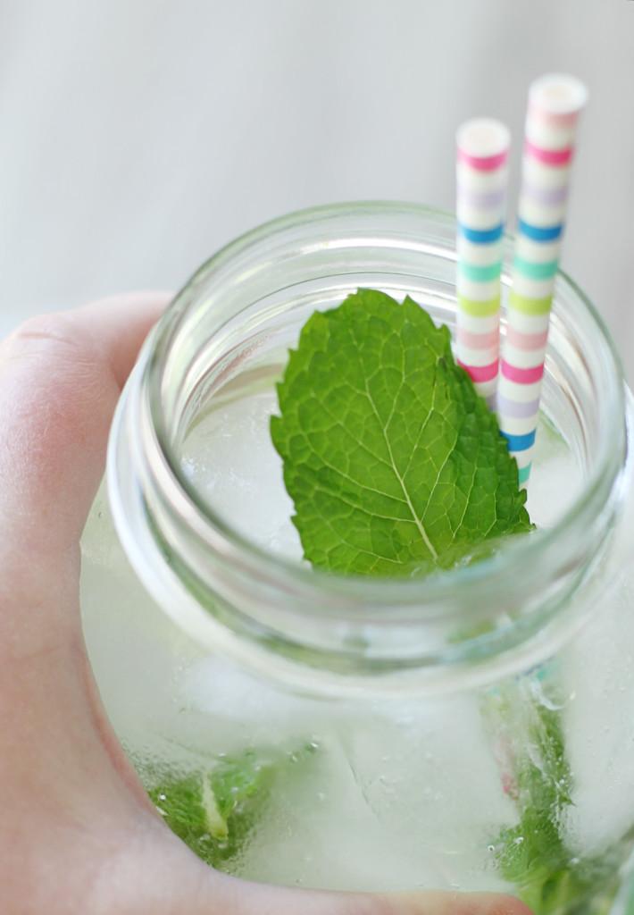 Sparkling Spa Water Sweet'N Low® Zero Calorie Sweetener by Foodtastic Mom