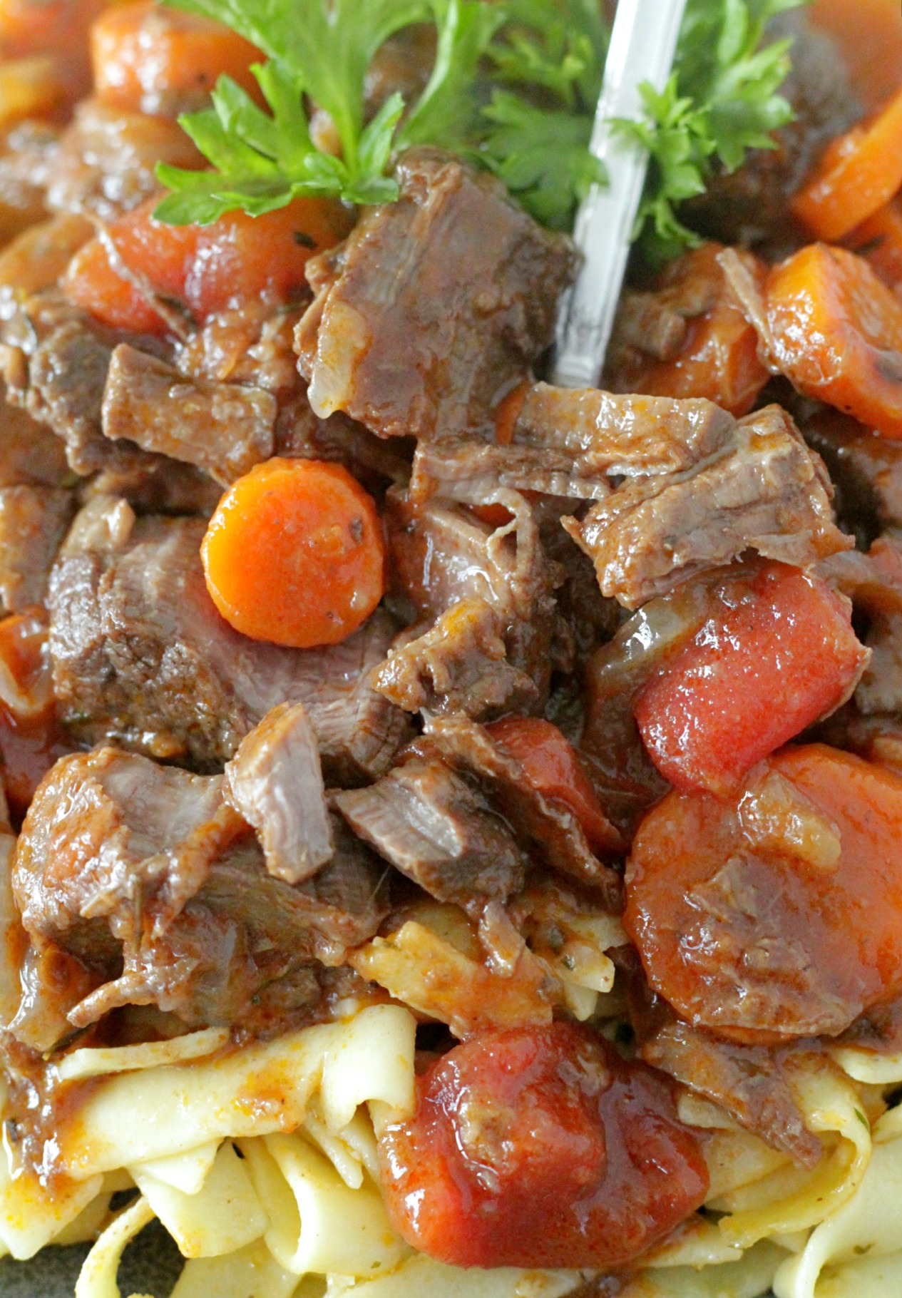 provencal beef stew close up