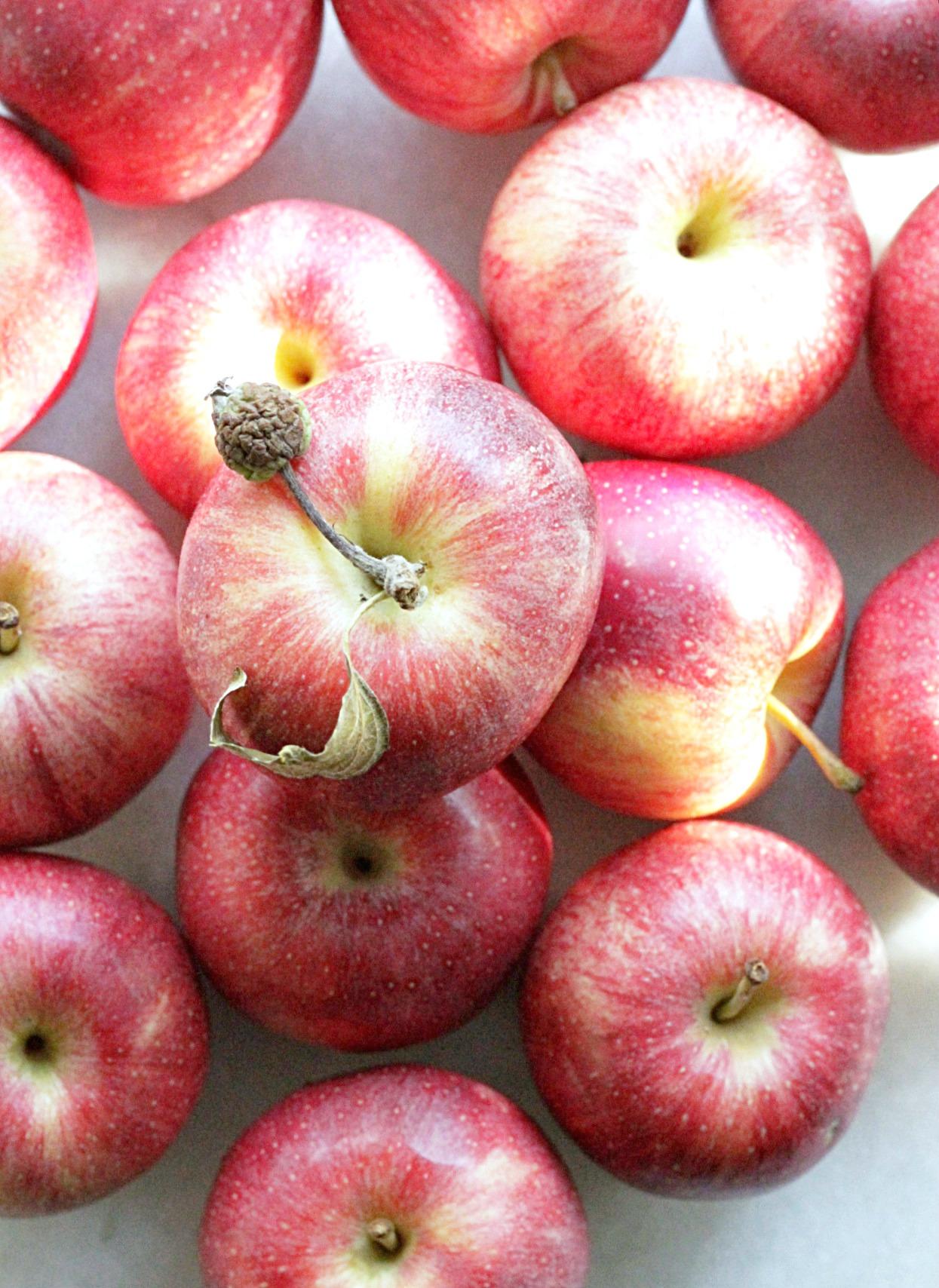instant pot applesauce apples