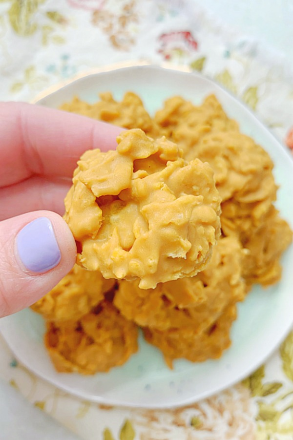 holding a peanut butter cornflake cookie