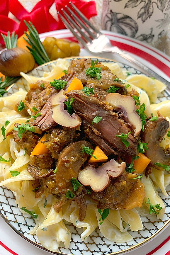 close up of chestnut beef stew