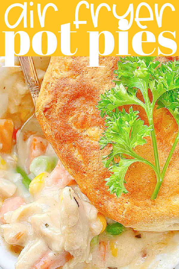 Air Fryer Pot Pie | Foodtastic Mom #airfryerrecipes #airfryerpotpie #potpierecipe #potpiewithbiscuits via @foodtasticmom