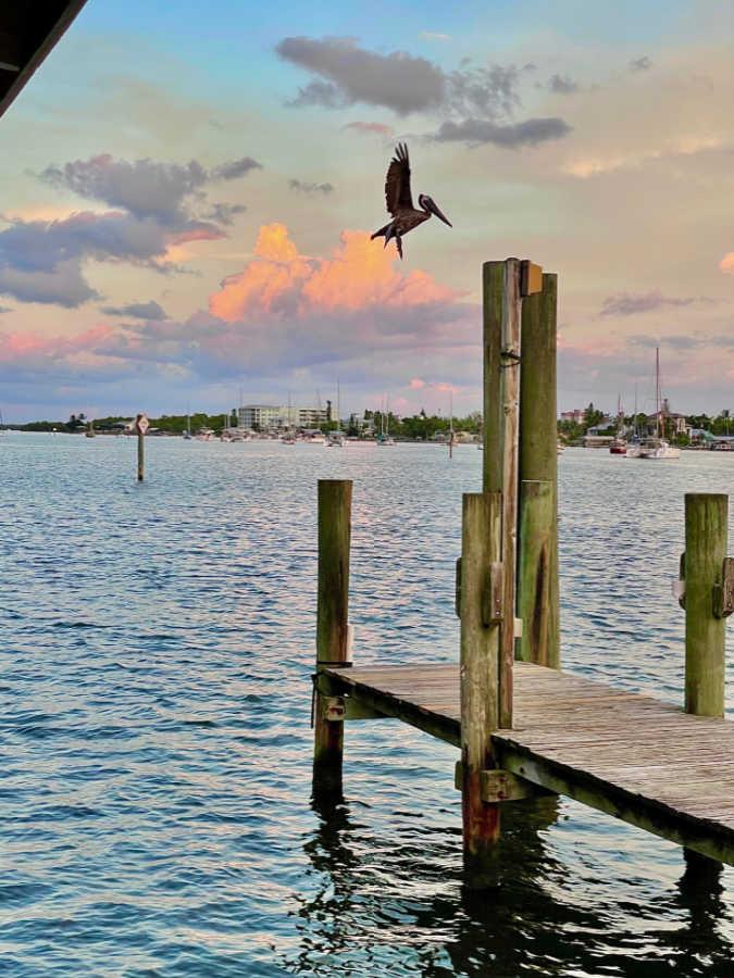Things to Do in Fort Myers   Foodtastic Mom #fortmyers #travelpost #thingstodoinfortmyers #keywest #keywesttravel