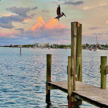 Things to Do in Fort Myers | Foodtastic Mom #fortmyers #travelpost #thingstodoinfortmyers #keywest #keywesttravel